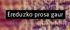 Ereduzko Prosa